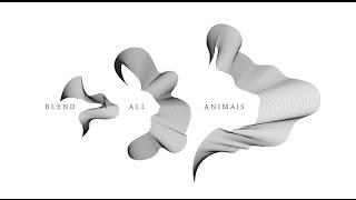 Graphic Design | Animals Blend | Adobe Illustrator/Photoshop