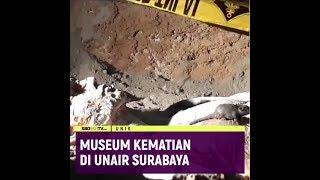 MUSEUM KEMATIAN DI UNAIR SURABAYA