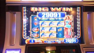 WMS Thumbelina Slot Bonus SUPER BIG WIN!