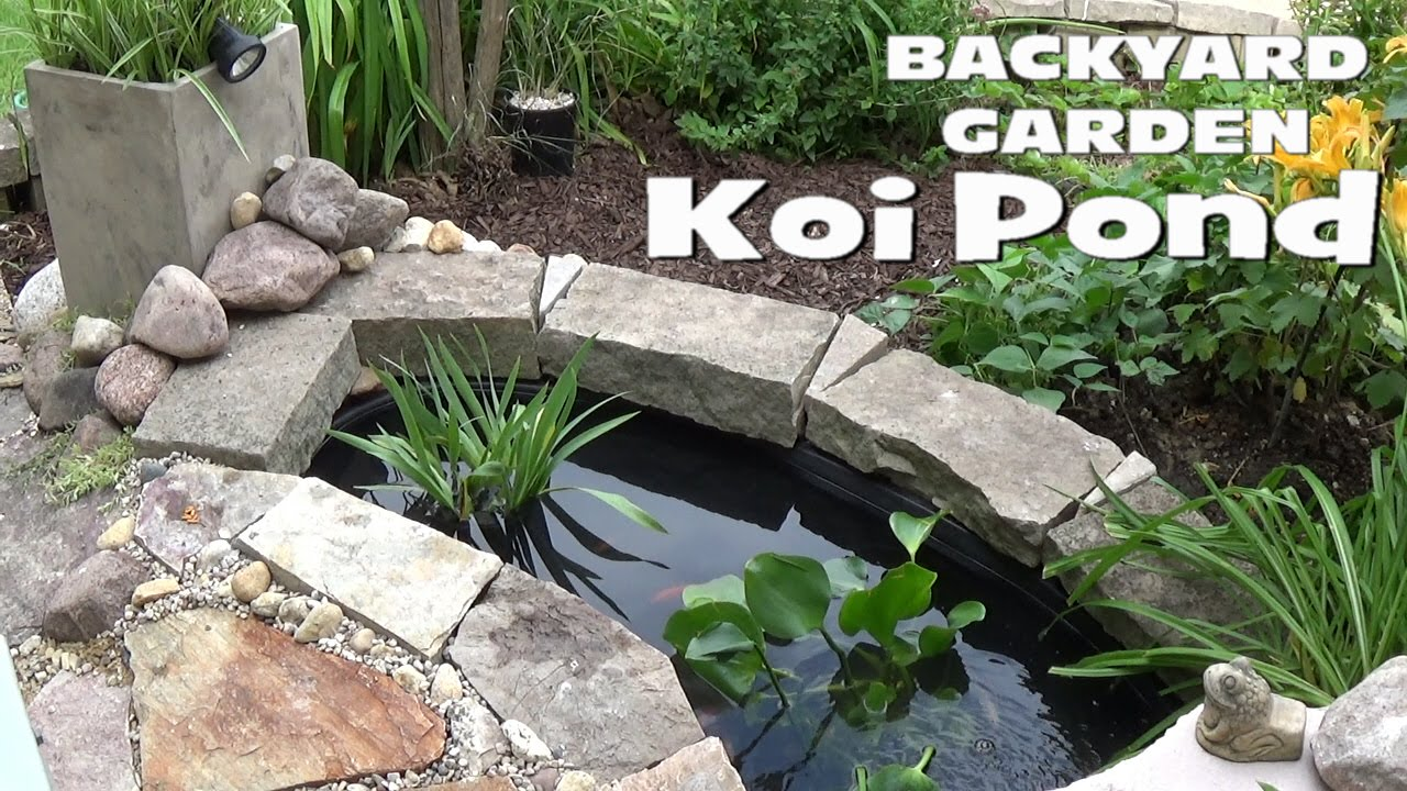 Small backyard garden koi goldfish pond setup youtube for How to build a koi pond on a budget