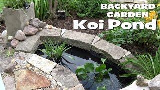 Small Backyard Garden Koi & Goldfish Pond - Setup