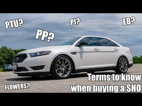 Terms to know when buying a Taurus SHO!