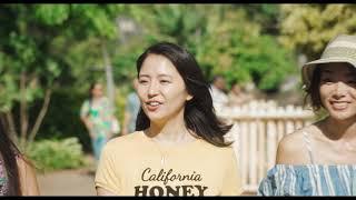 「トドカナイカラ」映画『50回目のファーストキス』版MV