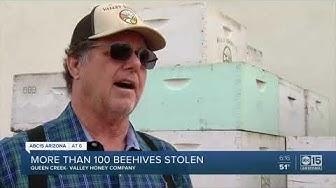 Beehives stolen from Queen Creek business