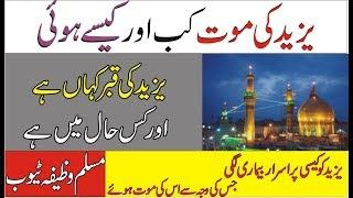 Yazeed Ki Qabar Kahan ha ! Yazeed ki Dardnak Mout  History Of Yazeed UrduHindi