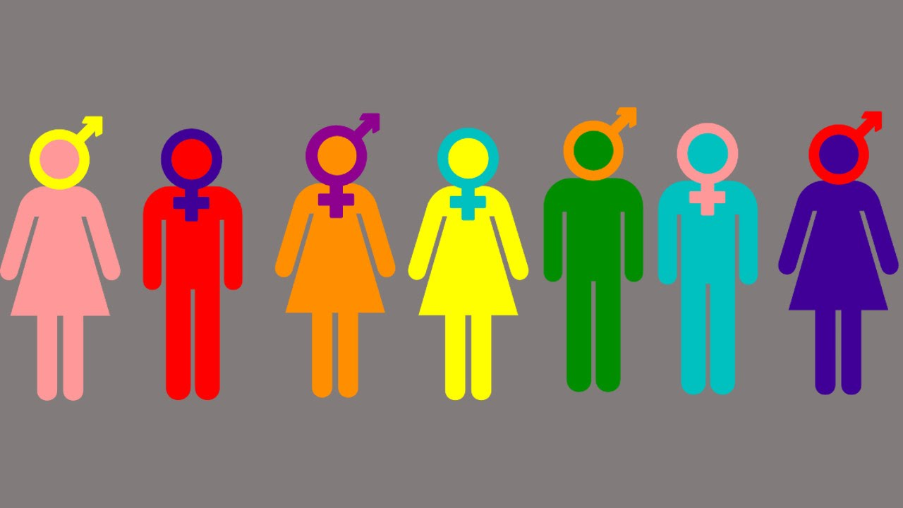 NYC releases list of 31 protected gender identities - YouTube