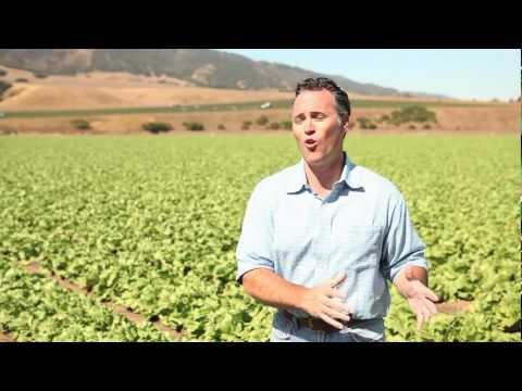 Do most fruit and vegetable farmers consider themselves environmentally friendly?
