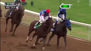 RACE REPLAY: 2015 Breeders' Cup Sprint