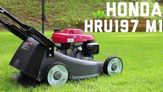 Honda HRU197 M1 Buffalo Bull GSV 190 Lawn Mower Startup Cold Start Sound Walk Around