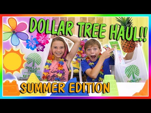 Thumbnail: 😍BEST DOLLAR TREE SUMMER FINDS😍| We Are The Davises