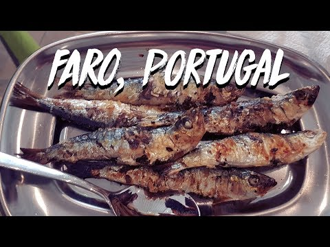 Seaside Flavours of Faro | Portugal Travel Vlog Day 9