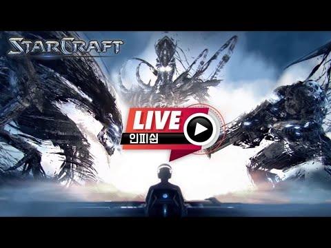 【 🔴 인피쉰 생방송 Live 】 빨무 스타 스타크래프트 팀플 (2021-06-20 일요일)
