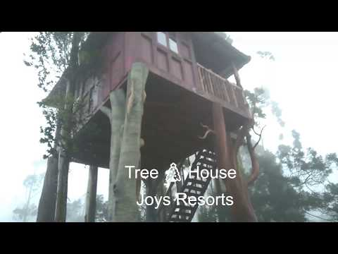 Munnar Tree House | Joys Hotels and Resorts | Amazing Mountain View in Kerala, India