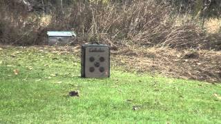52 yards (156 feet) long distance archery bullseye