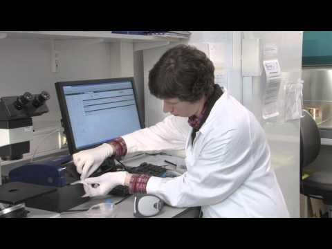 Laboratory Information Management System (LIMS)