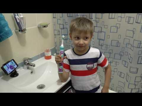 Как чистить зубы собаке -