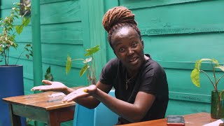 The Handsome waiter. Kansiime Anne. African Comedy