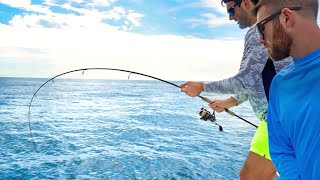 CRAZY Tampa Bay Offshore Fishing - Hogfish, Snapper, & Bonito