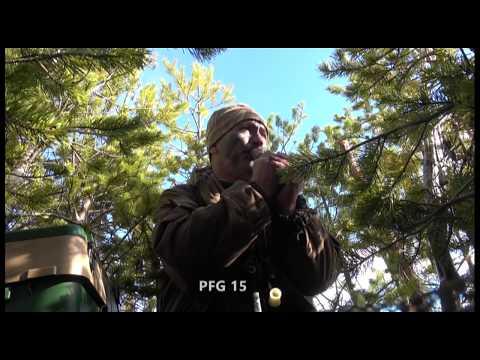 Охота на гусей. Каргополь, весна 2018. День третий, последний