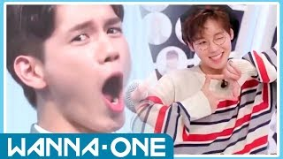 WANNA ONE FUNNY AND CUTE MOMENTS