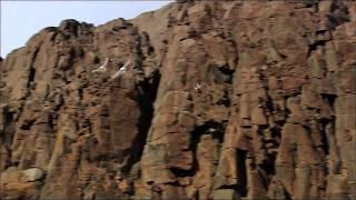 """Катя Самбука - """"Разрыв"""""""