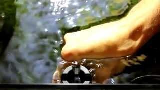 Обзор скиммера Eheim Skimm 350 для аквариума