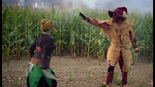 Gruselige Horror-Show im Maislabyrinth auf Gut Wulfshagen