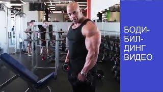 Бодибилдинг видео.Техника выполнения упражнений на дельтовидные мышцы.