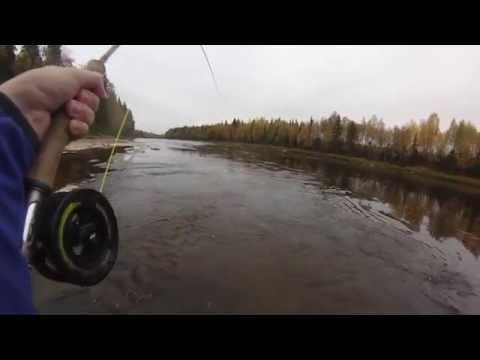 Big Salmon On Single-handed Fly-rod