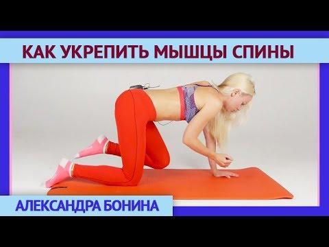 Фитнес и здоровье с биогимнастикой