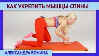 ►КАК УКРЕПИТЬ МЫШЦЫ СПИНЫ. Упражнение на укрепление мышечного корсета позвоночника и баланс.