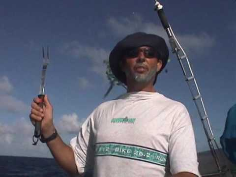 NautiDreams - Fanning Island to Fiji - 1999
