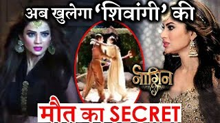 Naagin 3 new Promo : Shivangi's Murder Mystery to unfold