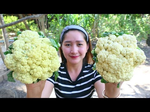 Yummy Cauliflower Cooking Beef – Cauliflower Stir Fried Recipe – Cooking With Sros