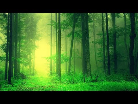 Healing Meditation Music, Soothing Music, Relaxing Music Meditation, Binaural Beats, ☯3277
