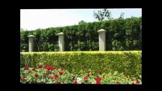 Болгария Святой Константин и Елена  Видео зарисовка(Уютное местечко вблизи г. Варна - Болгария