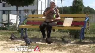 VodiAvto - Любовь и голуби!