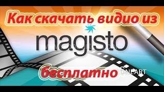 Как скачать видео из Magisto бесплатно