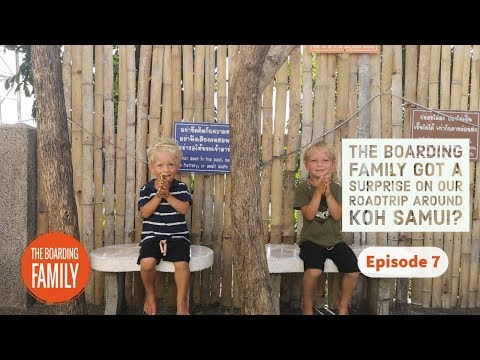 THE BOARDING FAMILY GOT A SURPRISE ON OUR ROADTRIP AROUND KOH SAMUI | LIFE OF A TRAVELING FAMILY