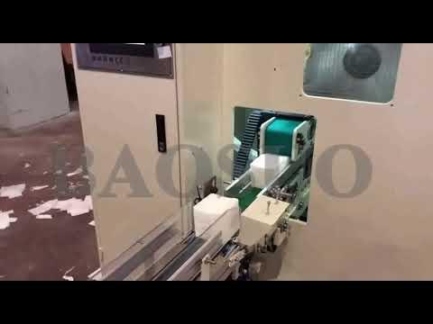 【BAOSUO】YH-PJ Facial Tissue Line Running Turkey Client Factory