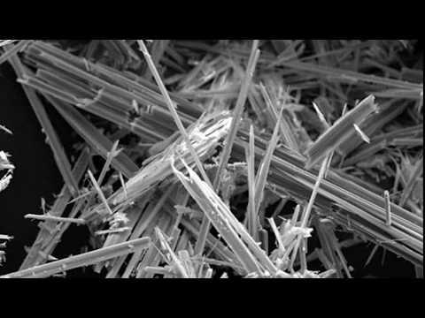 toxicology---environmental-toxicants