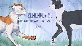 [WARRIORS] REMEMBER ME   Brightheart&Swiftpaw PMV