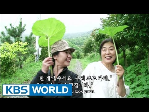 Screening Humanity | 인간극장 - When the Multiflora Roses Blossom, part 5 (2014.06.20)