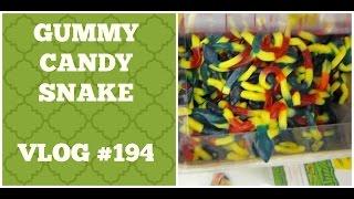 Gummy Candy Snake! (Vlog #194)