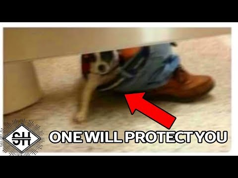 1 Will Protect You. The Rest Will Attack.