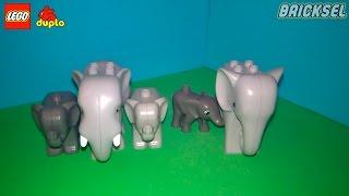 Семья слонов. Семьи LEGO DUPLO. Животные лего дупло слоны: слон, слоник