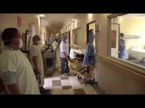 OMS: La gripe, una amenaza imprevisible