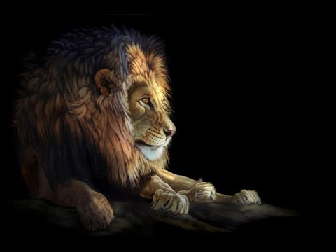 animal paintings lion heather realistic lara amazing painting portrait animals 3d scratchboard abstract king california wildlife drawing wild lions background