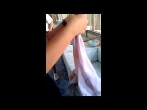 โครงงานวิทยาศาสตร์ : กำจัดคราบสนิมบนเสื้อผ้า