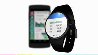 Mes Comptes sur Android Wear by BNP Paribas